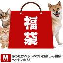 猫 犬 福袋 ベッド ペットベッドお楽しみ袋 Mペットベッド ペット用 カドラー 猫 キャット 寝具 犬 ド...