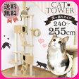 キャットタワー 突っ張り 猫顔ボックス付き QQ80037 (高さ:240-255cm ) あす楽対応 あす楽対応 送料無料 猫タワー 天井突っ張り つっぱり ハウス 多頭飼い 大型 爪とぎ おしゃれ 運動不足 ベージュ 【D】