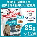 【最大350円OFFクーポン】ロイヤルカナン 猫 FHN ウ...