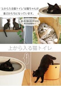 上から入る猫用トイレ