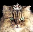 【再入荷♪】マロンの猫用ティアラ