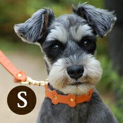 愛犬 首輪 ASHU パステルボーン カラー(首輪) Sサイズ【小型犬サイズ】 【 可愛い 犬の首輪 お散歩 グッズ 誕生日 プレゼント 小型犬】