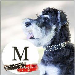 犬 首輪 ASHU サイドループレザーカラー Mサイズ