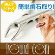 【予約販売1月末発送予定】愛犬・愛猫用歯石取りペンチ5P13oct13_b【RCP】【a0268】