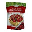 フリーズドライ ストロベリー 100g DJ&A FD Strawberries