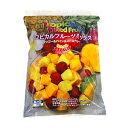 トロピカルマリア トロピカルフルーツミックス 1kg マンゴー、パイナップル、ストロベリー Tropical Fruits Mix