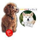 特許素材 5倍! 日本製 犬用 首輪 中型犬 ペット用 50