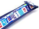 リコーダーケース・定規ケース 国旗で旅する世界旅行(スカイブルー)【たて笛ケース ものさしケース】(子供 キッズ 小学生 男の子)