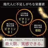 CELLCELLARPREMIUMLP6