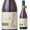 【誰でもワインP10倍 1/25限定】ガンマ オーガニック ピノ ノワール レセルバ 赤ワイン 自然派ワイン ヴァン ナチュール 自然派 ビオ BIO