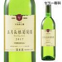五月長根葡萄園 白 エーデルワイン[白ワイン][日本ワイン]...