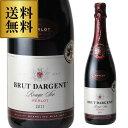 【25%OFF】ブリュット ダルジャン ルージュ セッコ メルロー 長S スパークリングワイン