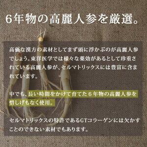 【定期購入】セルマトリックス極雅