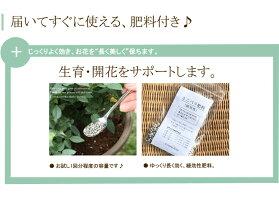 エコロ・サークル【楽ギフ_メッセ入力】肥料