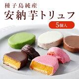 安納芋トリュフチョコレート5個入 スイートポテト ホワイトデー チョコレート 洋菓子 和菓子 スイーツ 内祝い ギフト プレゼント 誕生日