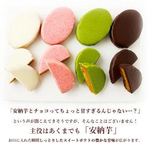 味はチョコ・ホワイト・抹茶・キャラメル・苺の各5種類