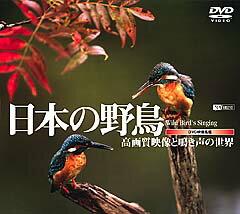 """DVDでバードウォッチング!100種もの野鳥たちの鮮明かつ貴重な映像の数々。""""野鳥""""ファン必見..."""