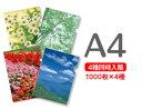 キングジム シンプリーズ 透明ポケット A4タテ型 20枚入 ピンク 103SPDP-20ヒン