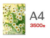 A4クリアファイル印刷3500枚