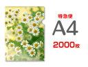 【特急便】A4クリアファイル2000枚(単価38.25円)