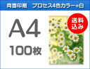 A4クリアファイル印刷100枚(単価195円)