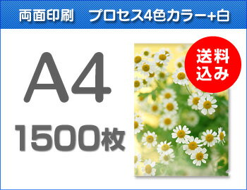 A4クリアファイル印刷1500枚