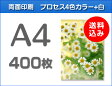 A4クリアファイル印刷400枚(単価73.75円)