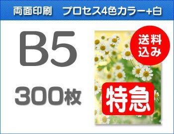 【特急便】B5クリアファイル300枚