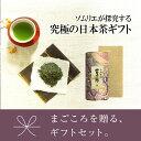 お茶 緑茶 ソムリエブレンド煎茶ギフト 【富士緑】200g×...