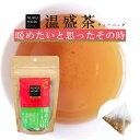 お茶 健康茶 【 温盛茶ティーバッグ(2