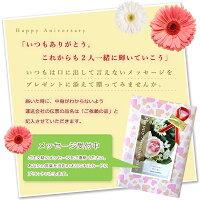 【楽ギフ_包装】ギフト包装無料/メッセージカード(無料)メッセージをご連絡下さい