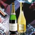 【送料無料】数量限定!特選シャンパン2本セット