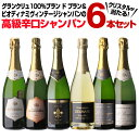 ドン ペリニヨン 白 2010 750mlドンペリ シャンパン ボトルのみ