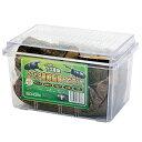 クワガタ産卵飼育 5点セット 関東当日便