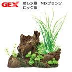 GEX 癒し水景 MIXプランツ ロック茶 関東当日便