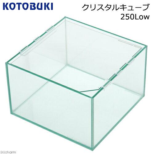 コトブキ工芸 kotobuki クリスタルキューブ 250Low