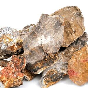 独特の色と形状が魅力!形状お任せ 木化石 サイズミックス 5kg 関東当日便