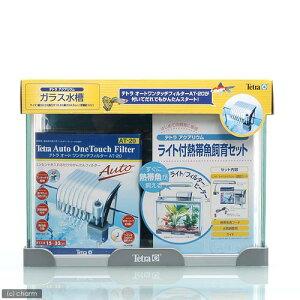 《お一人様2点限り》テトラ ライト付熱帯魚水槽セット AG?31TL●【関東当日便】【HLS_DU】