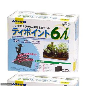 60Hz ティポイント6 I 60Hz(西日本用) 関東当日便