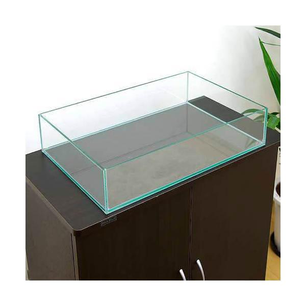 GLASIA 水上育成用 450(45×30×10cm)(5mm) 45cm水槽