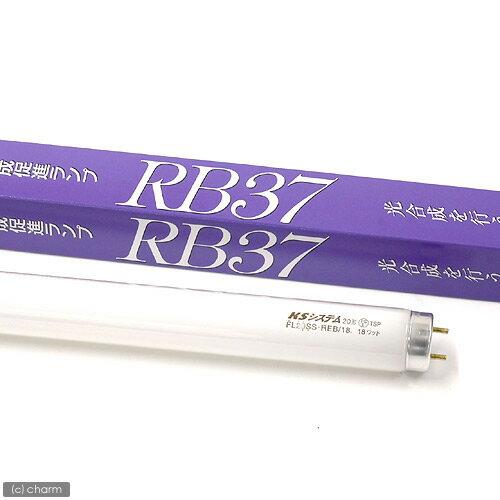 交換球 興和 RB37 15W 水槽用照明 ライト 海水魚 サンゴ
