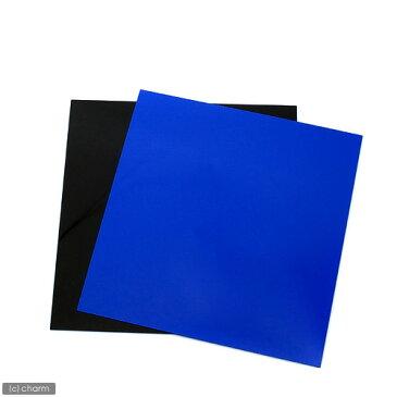 RG−30水槽用 丈夫な塩ビ製バックスクリーン 28.3×27.5cm 青 スカイブルー 関東当日便
