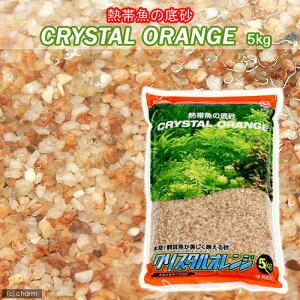 クリスタルオレンジ 5kg【関東当日便可能】