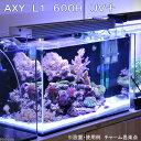 ハイパワーLEDライト!AXY L1 600H UV+(アクシーエルワン)【関東当日便】【HLS_DU】