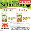 風味・栄養まるごとフリーズドライ!Salad Bar 芽キャベツ 7g【関東当日便】【HLS_DU】