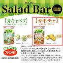 風味・栄養まるごとフリーズドライ!Salad Bar カボチャ 8g【関東当日便】【HLS_DU】