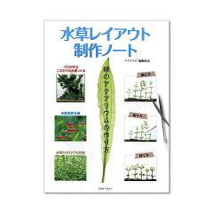 緑のアクアリウムの作り方水草レイアウト制作ノート 関東当日便