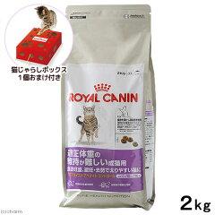 ロイヤルカナン FHN ステアライズド アペタイトコントロール 成猫用 2kg 1袋 猫じゃら…