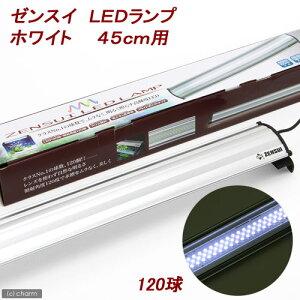 低電力&高光度!ゼンスイ LEDランプ ホワイト 45cm用 水槽用照明・LEDライト 関東当日便