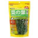 無添加・無着色の国産品!南知多産野菜 菜の葉 30g 関東当日便